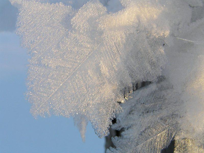 Кристаллы. Фото Л.Г. Целищевой