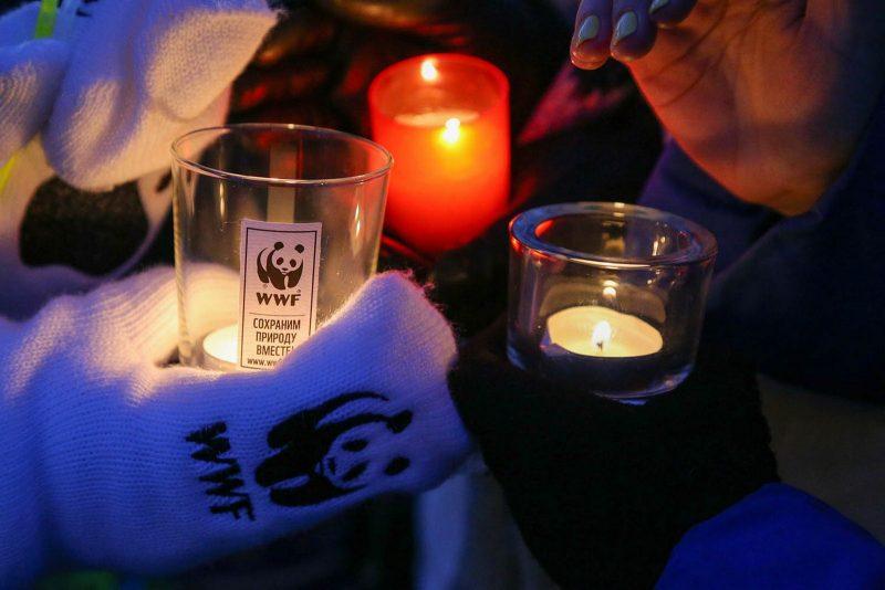 "Международная акция ""Час Земли"". Фото сайт WWF"