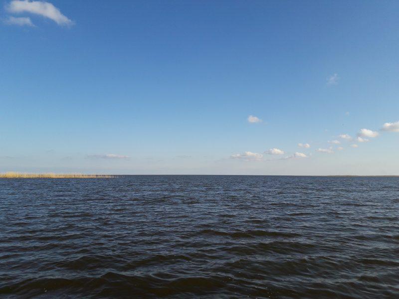 Р. Волга впадает в Каспийское море. Фото М. Н. Владыкиной