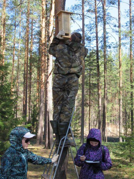 За работой. Фото С.В. Кондруховой