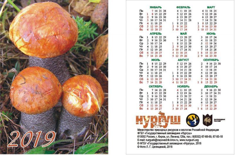 Календарь карманный Подосиновик
