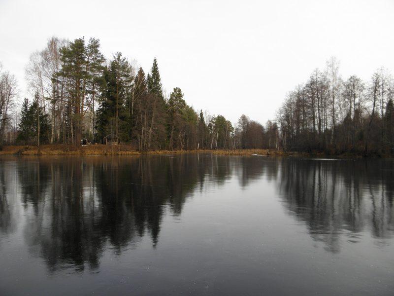Лед на озере Бобры. Фото Л.Г. Целищевой