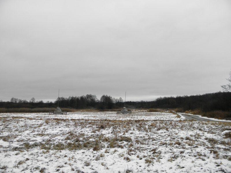 Марийское раздолье. Фото Л.Г. Целищевой