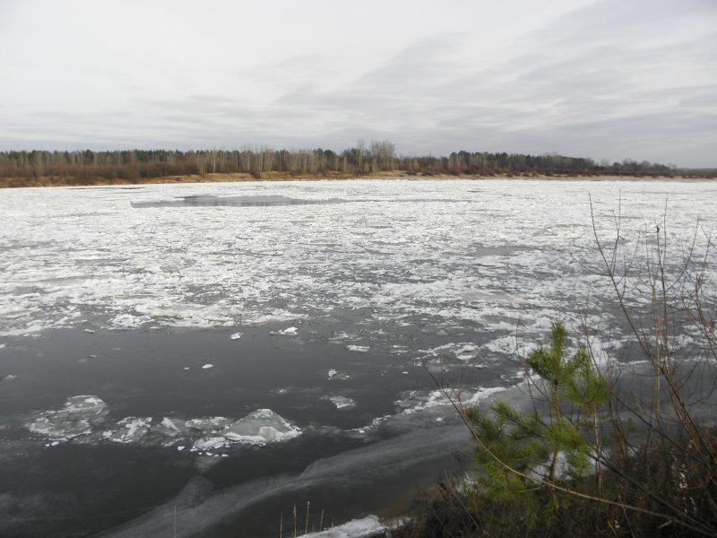 Начало ледостава на Вятке. Фото Л. Г. Целищевой