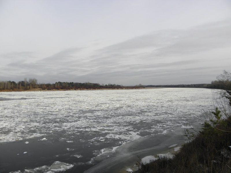 Река Вятка у заповедника. Фото Л. Г. Целищевой