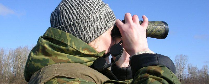 Учет птиц орнитологом С.В. Кондруховой. Фото С. Е. Шубина
