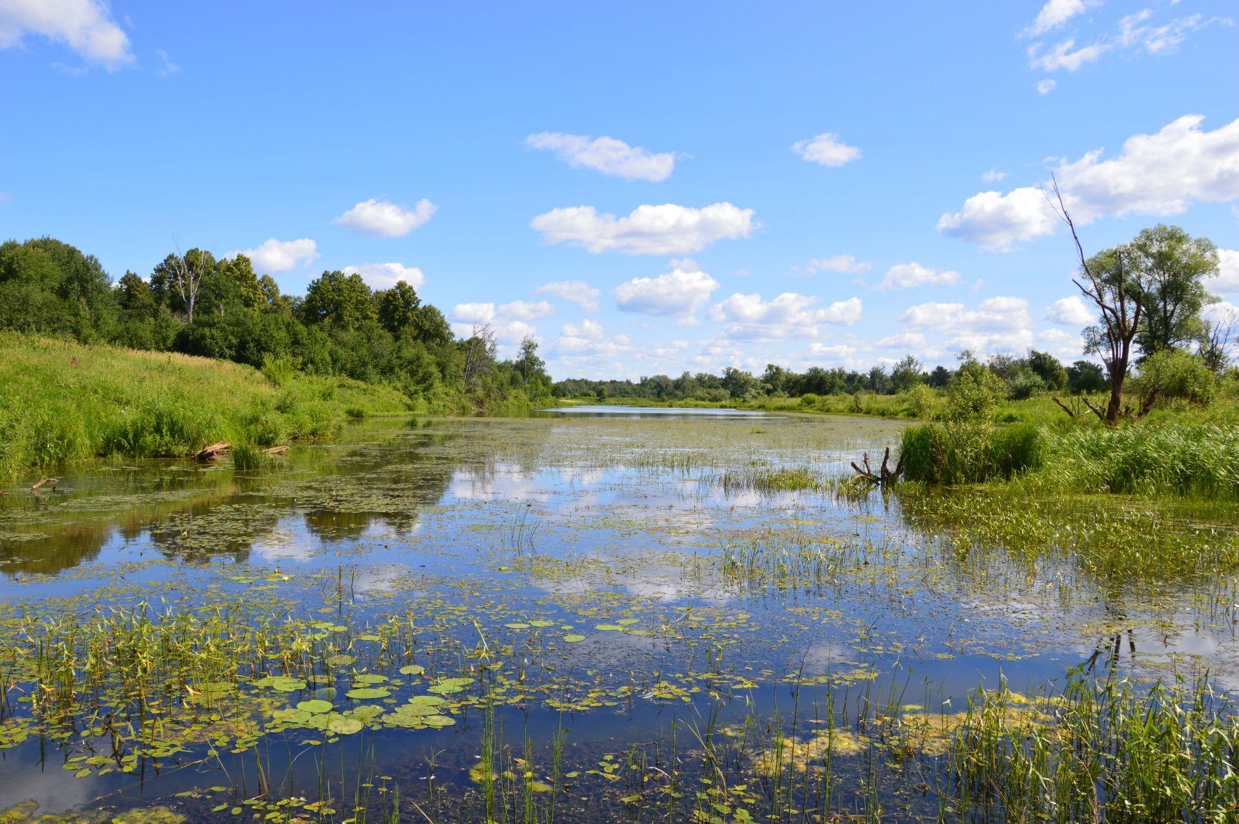 Озеро Холщовик. Фото Е. П. Лачоха