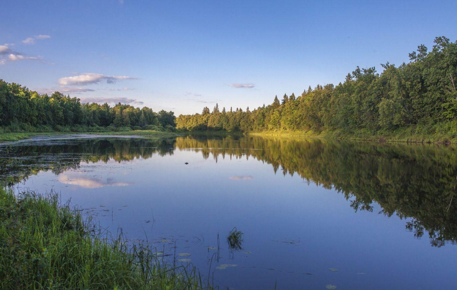 Озеро кривое. Фото А. А. Широких