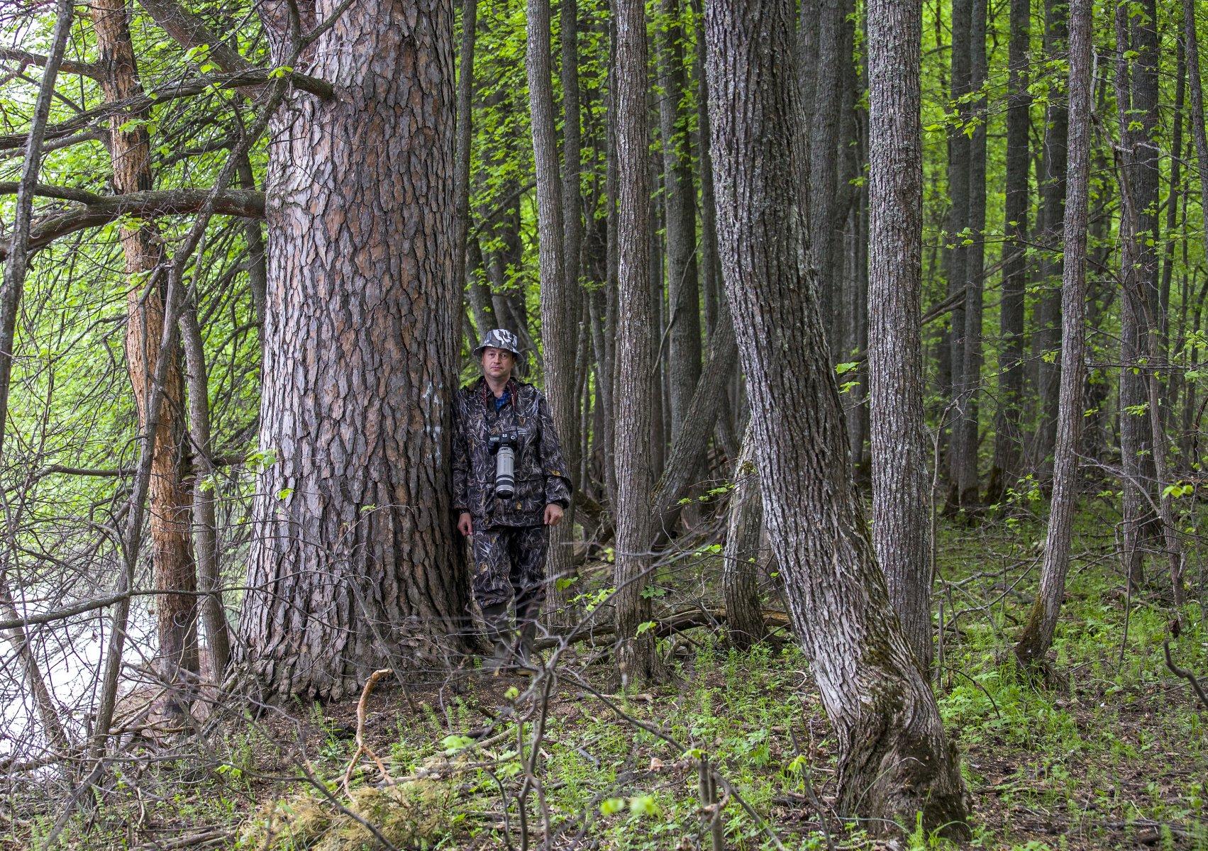 Среди деревьев. Фото А. А. Широких