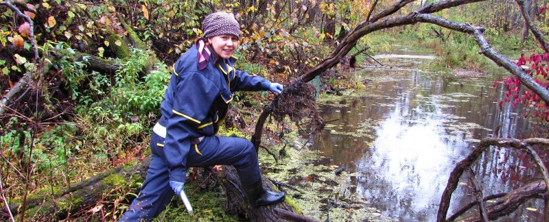 Е.В. Панюкова изучает комаров в заповеднике. Фото Е.В. Рогожниковой