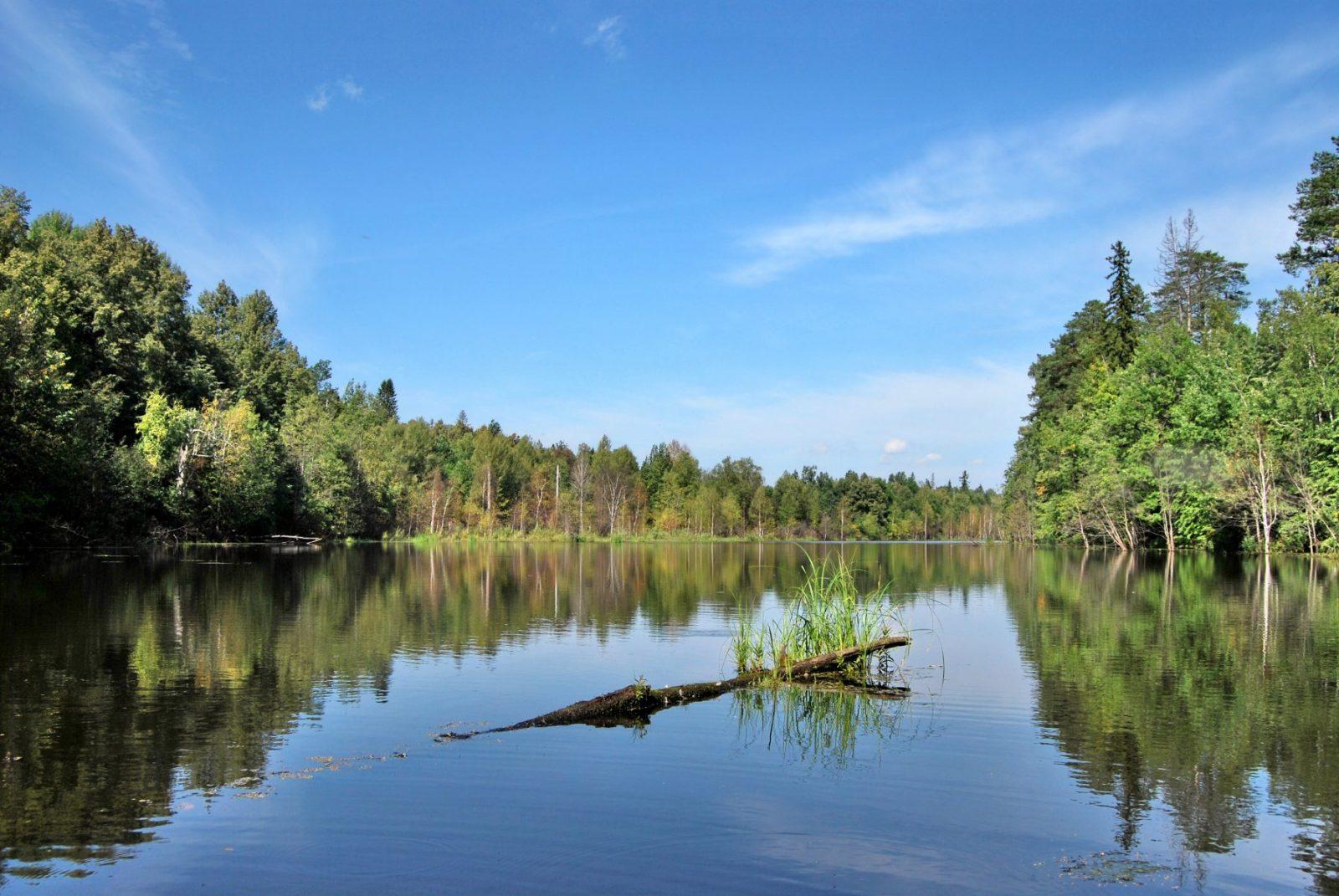 Выставка Голубые озёра - Озеро Бабье. Фото Н. Н. Ходырева