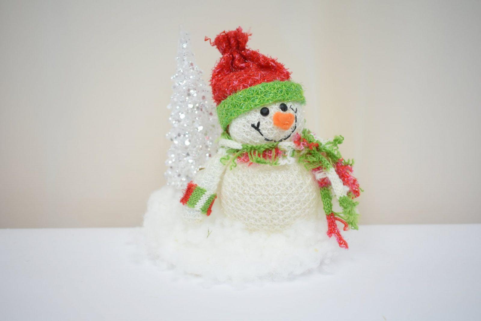 Выставка Снеговик - Заповедный снеговик. Фото Н.С. Просворниной